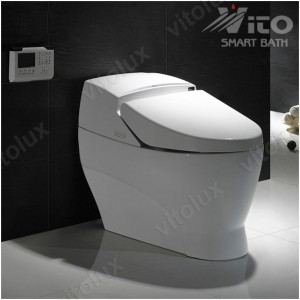 intelligent toilets (6)