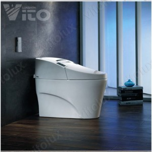 smart toilets (5)