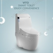 smart toilets (7)